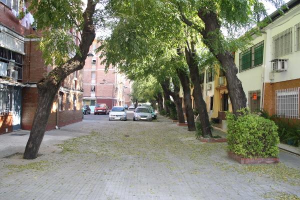 calle lebrija
